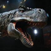 Dinosaurier Tickets